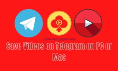 Save Videos on Telegram on PC or Mac